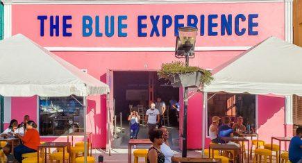 The-Blue-Experience-Chobolobo